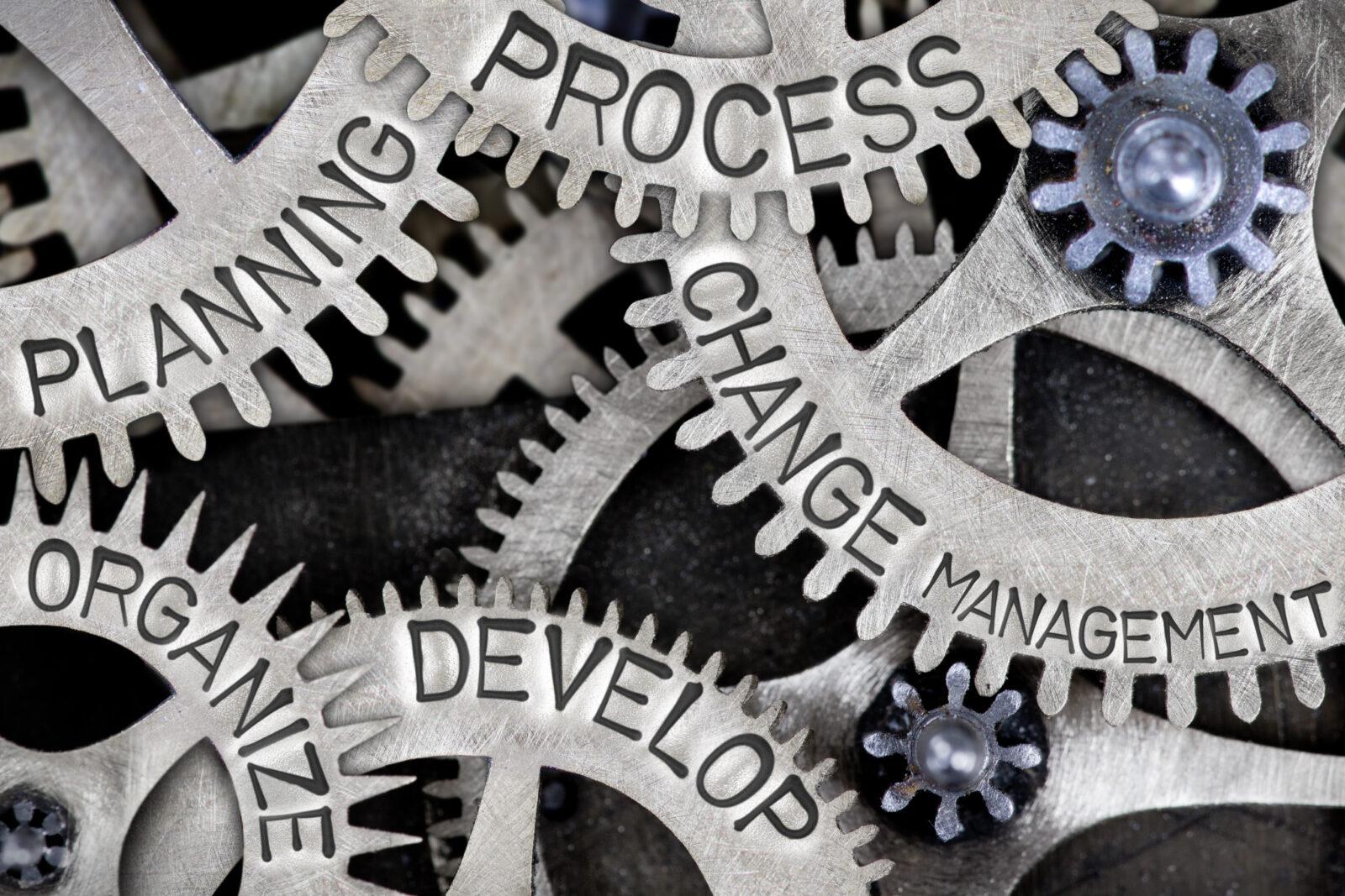 Prozess- und Projektmanagement