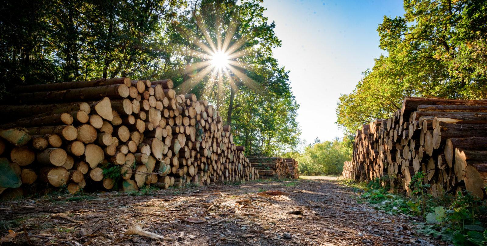 Land- und Forstwirtschafts-Pauschalierungsverordnung